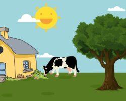 6 tegn på at du ikke kan bo i Udkantsdanmark
