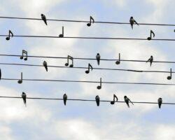 3 ting vi kan lære af Philip Fabers fællessang